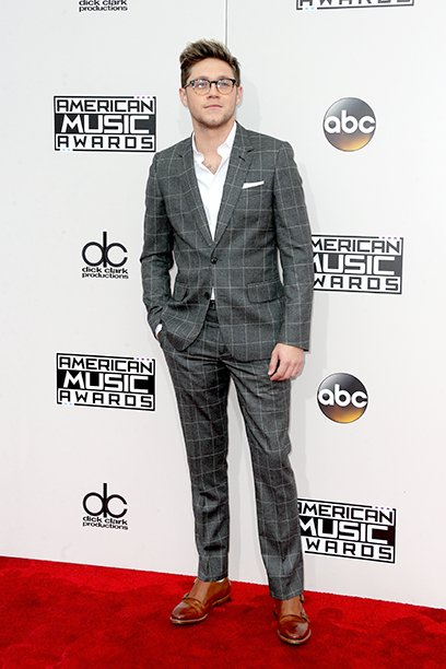 LOS ANGELES, CA - NOVEMBER 20: Recording artist Niall Horan attends the 2016 American Music Awards at Microsoft Theater on November 20, 2016 in Los Angeles, California. (Photo by Frederick M. Brown/Getty Images)