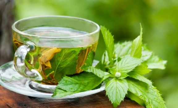Why green tea is a healthier alternative to other beverages | TheCable.ng