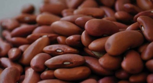 Eat Me: Five reasons to include 'superfood' beans in your diet | TheCable.ng