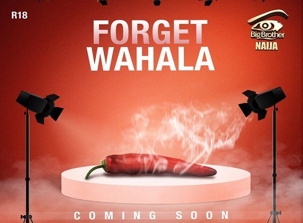 Big Brother Naija season 4 kicks off in June
