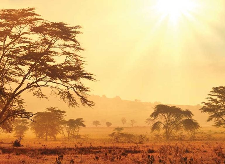 Extreme heatwave to hit one-third of African city-dwellers, experts warn