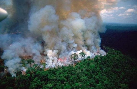 Outrage as fire rips through Brazil's Amazon — world's largest…