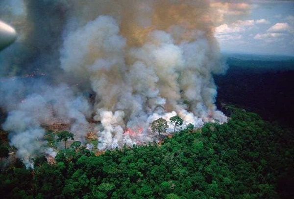 Outrage as fire rips through Brazil's Amazon -- world's largest rainforest