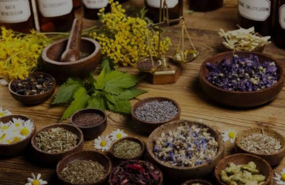 Herbs fight many diseases better than conventional drugs, says practitioner