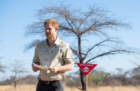 Prince Harry takes over NatGeo's Instagram account in conservation drive for trees