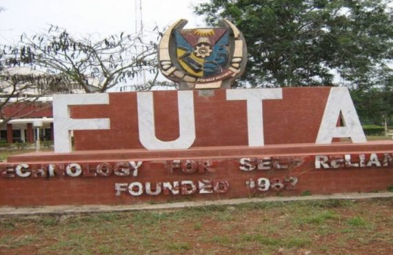 'They should be jailed' — video of FUTA students assaulting…