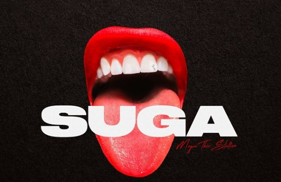 DOWNLOAD: Megan Thee Stallion drops 'Suga' album
