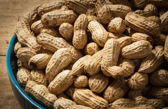 Four health benefits of groundnuts