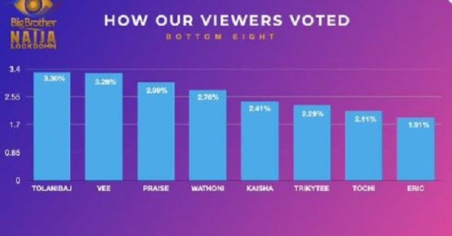 BBNaija Day 21: How fans, housemates voted to evict Tochi, Eric