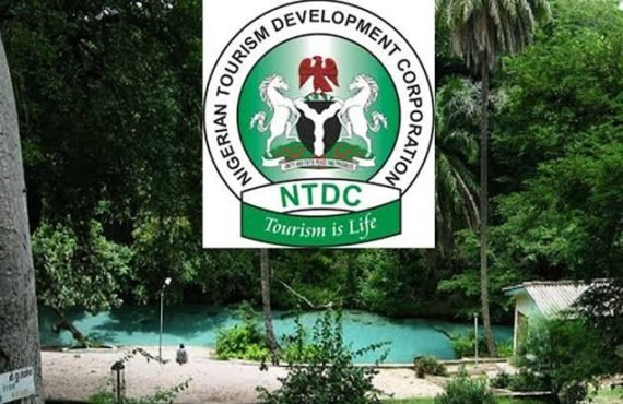 Google, NTDC partner to support tourism industry