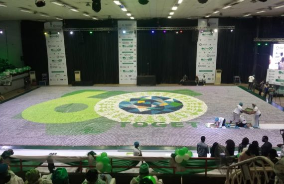 Nigeria sets world record with 60,000 cupcakes mosaic to mark 60th independence