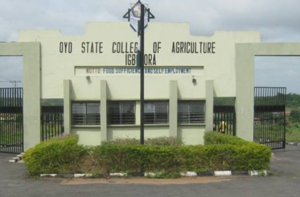 Oyo college postpones exams to Nov 9
