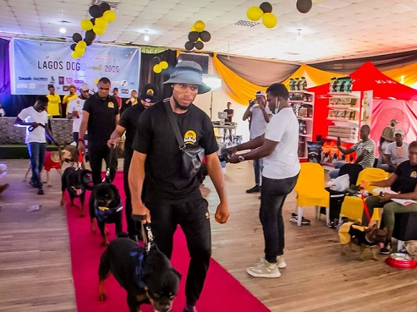 EXTRA: Dogs compete for best dressed as Lagos holds second carnival