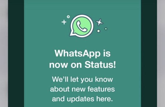 Anxiety as WhatsApp puts up own status to remind users…