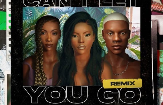 DOWNLOAD: Stefflon Don enlists Tiwa Savage, Rema for 'Can't Let You Go' remix