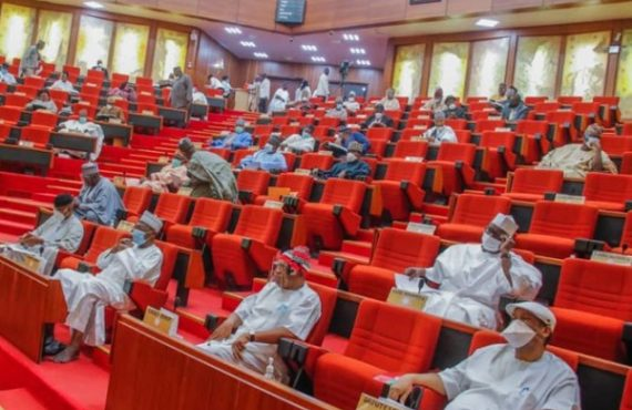 Senate passes bill to establish steel varsity in Kogi